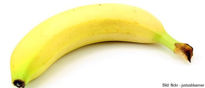 In der Industrie 4.0 geht sogar die Banane always online